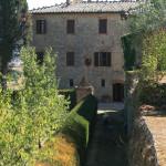 8. Villa from Garden