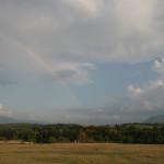 Artist under the rainbow
