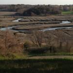 Marshscape