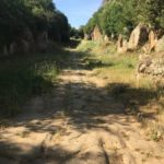 The Ancient Roman Road